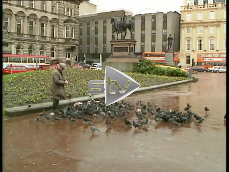 Man Feeds Pigeons in Glasgow's George Square 1989