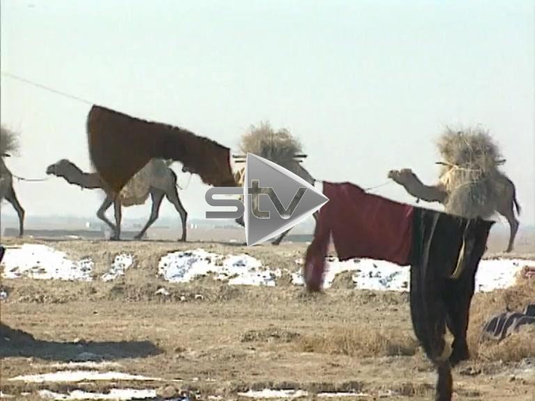 Afghanistan Camp