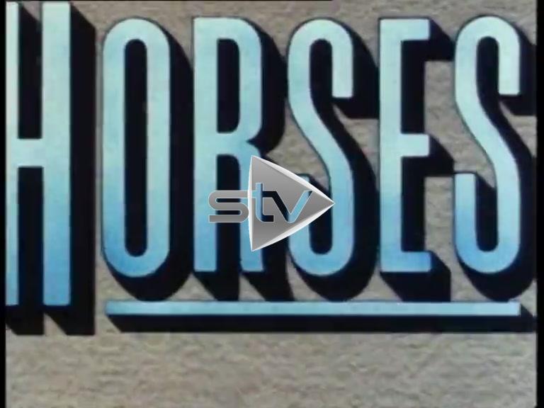 Horses Animated Intro