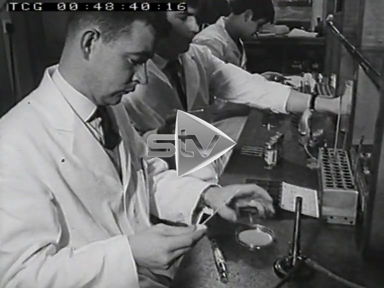 Scientists at Work 1965